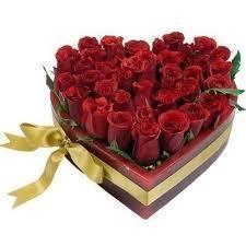Тр. Зарезан или деня на влюбените, ще празнуват Августинките- еп.7 ...